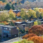landschap.panorama.01.nvo.jpg